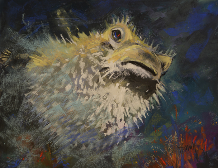 Sulawesi Sirens: Startled Porcupine Puffer Fish